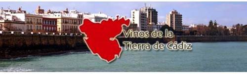 do vt de cadiz